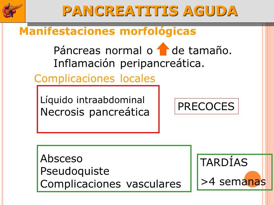 PANCREATITIS AGUDA Manifestaciones morfológicas
