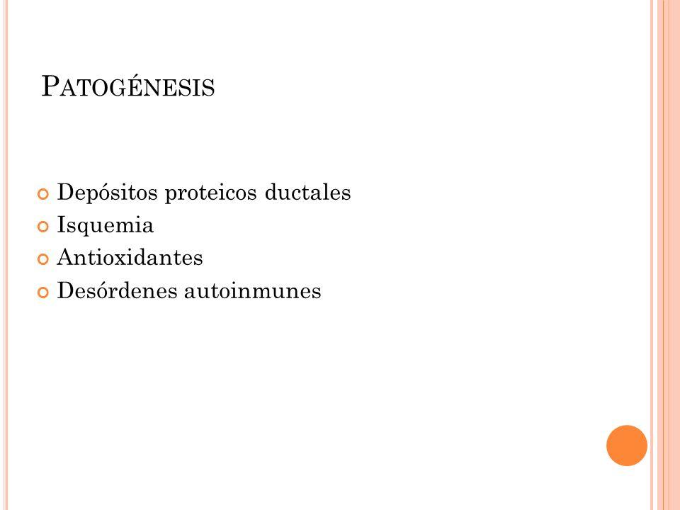 Patogénesis Depósitos proteicos ductales Isquemia Antioxidantes
