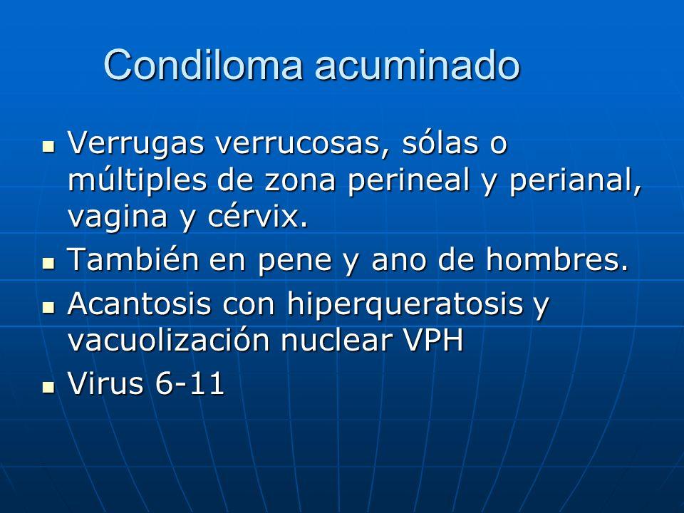 Condiloma acuminadoVerrugas verrucosas, sólas o múltiples de zona perineal y perianal, vagina y cérvix.