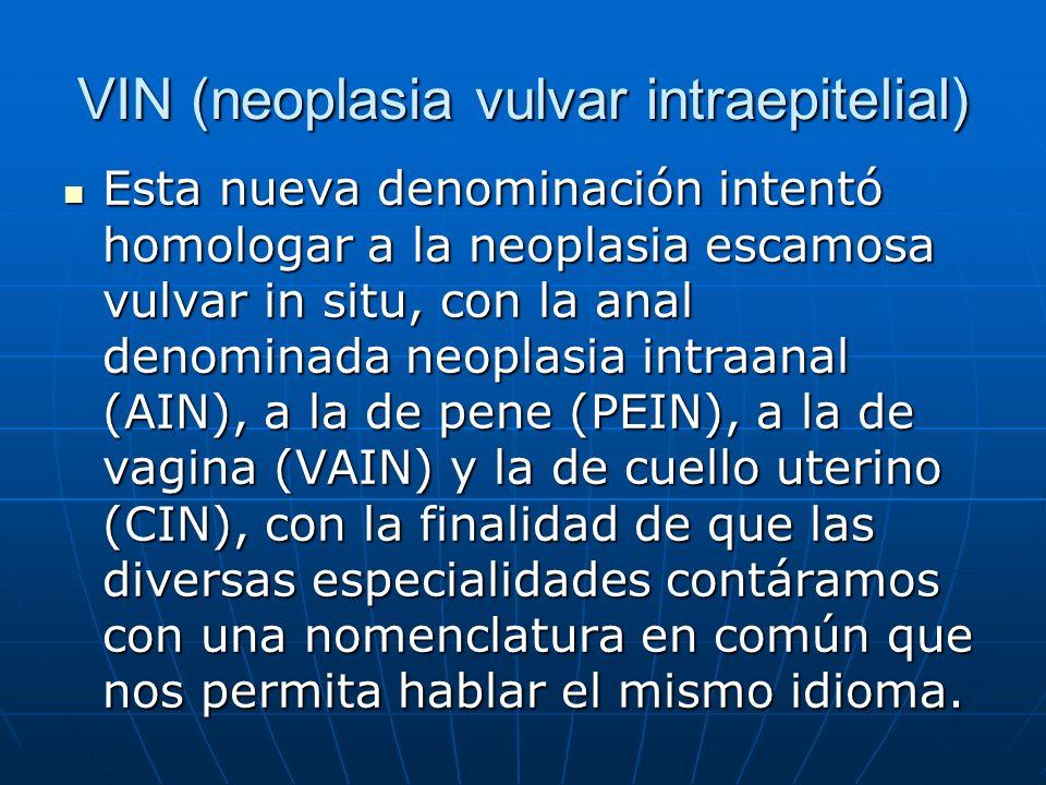 VIN (neoplasia vulvar intraepitelial)