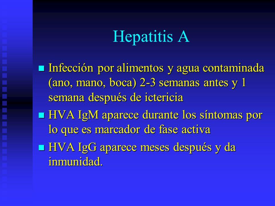 Hepatitis AInfección por alimentos y agua contaminada (ano, mano, boca) 2-3 semanas antes y 1 semana después de ictericia.
