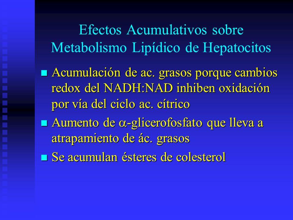 Efectos Acumulativos sobre Metabolismo Lipídico de Hepatocitos