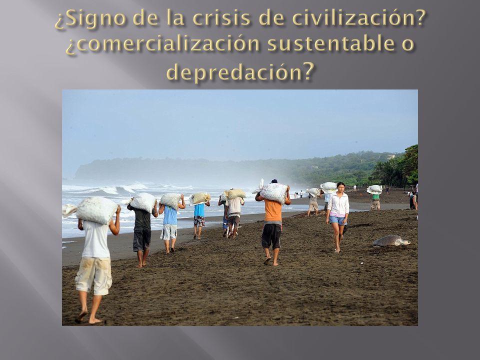 ¿Signo de la crisis de civilización