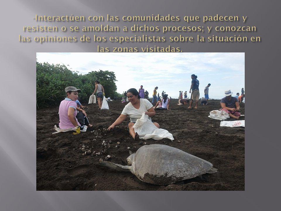 -Interactúen con las comunidades que padecen y resisten o se amoldan a dichos procesos; y conozcan las opiniones de los especialistas sobre la situación en las zonas visitadas.