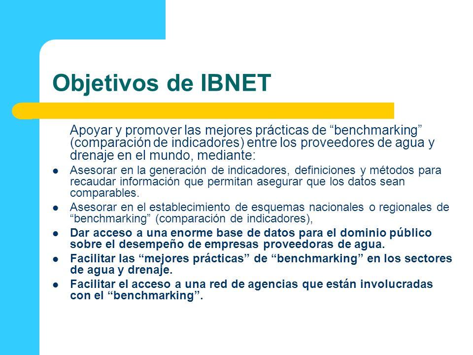 Objetivos de IBNET