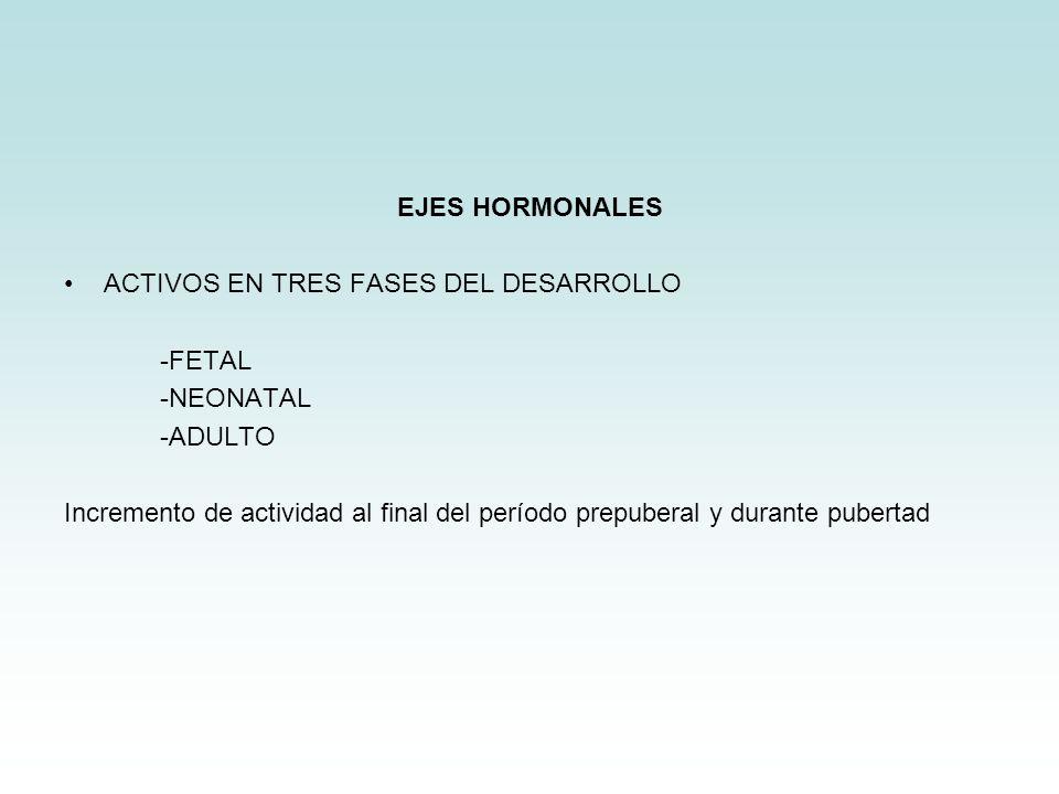 EJES HORMONALES ACTIVOS EN TRES FASES DEL DESARROLLO. -FETAL. -NEONATAL. -ADULTO.