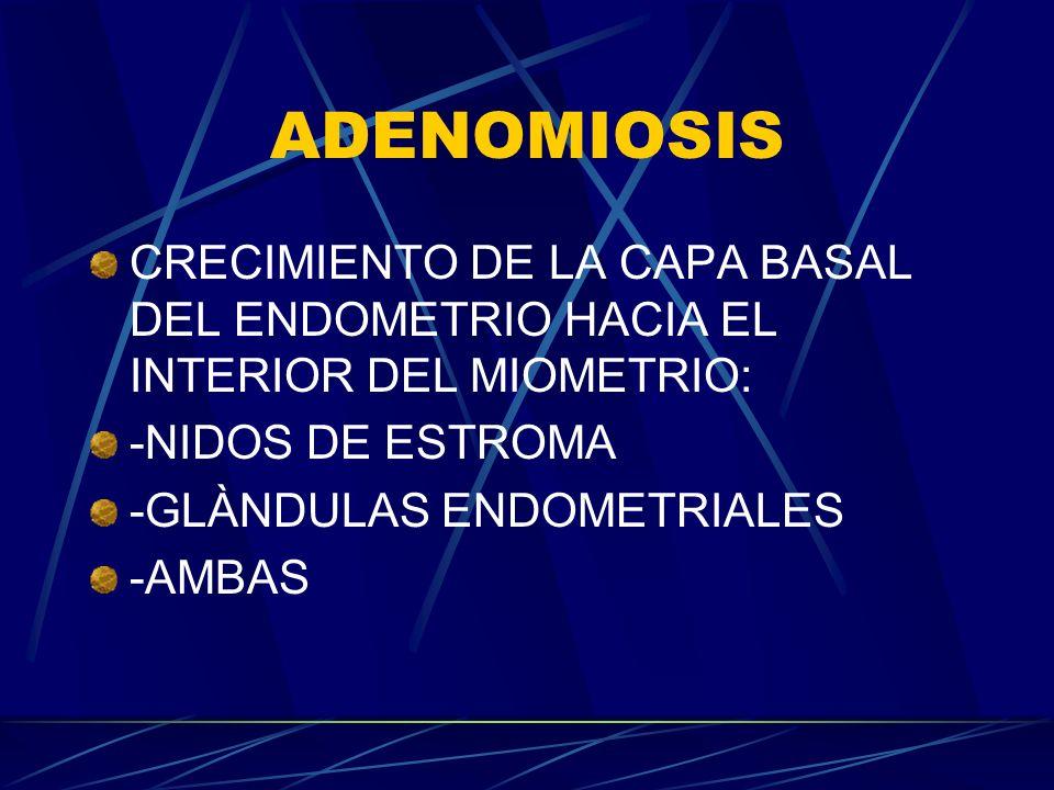 ADENOMIOSIS CRECIMIENTO DE LA CAPA BASAL DEL ENDOMETRIO HACIA EL INTERIOR DEL MIOMETRIO: -NIDOS DE ESTROMA.