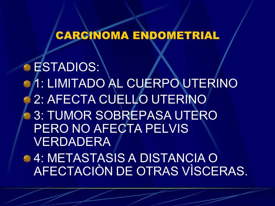 CARCINOMA ENDOMETRIAL