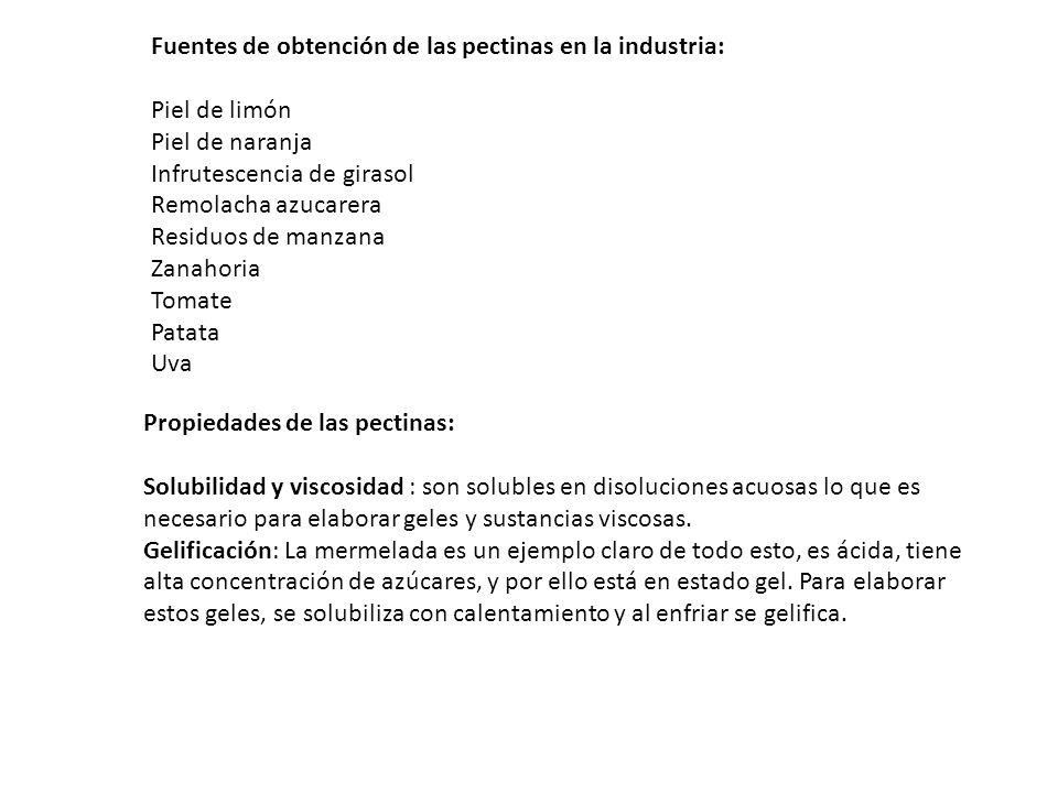 Fuentes de obtención de las pectinas en la industria: