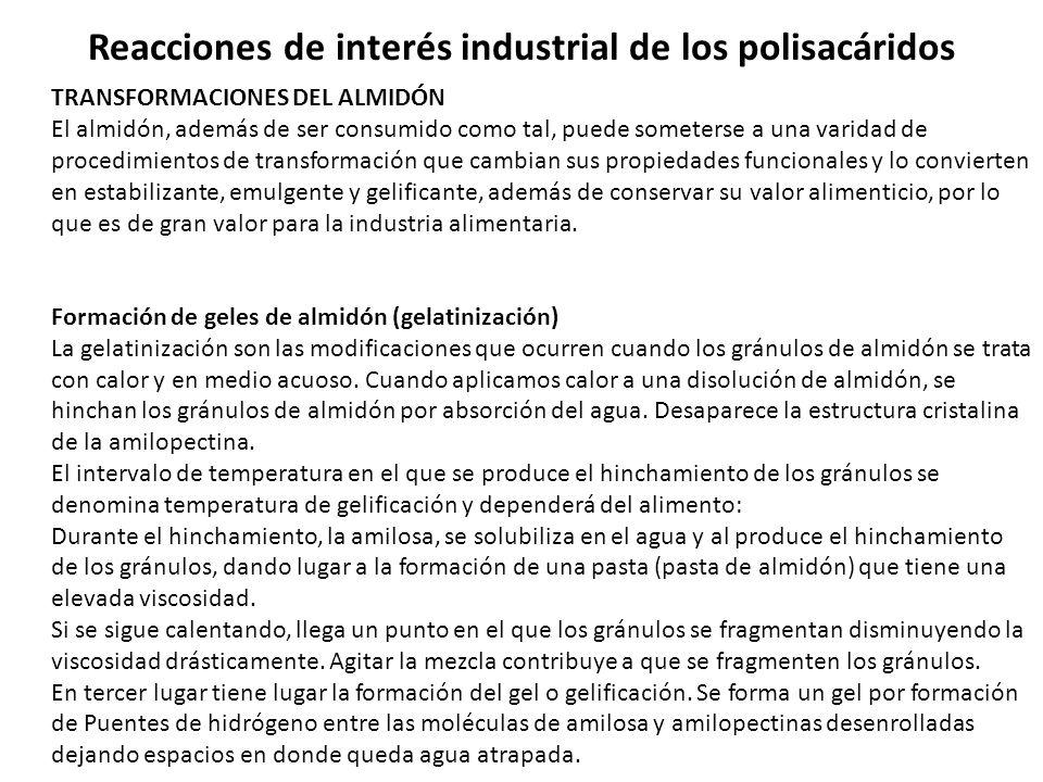 Reacciones de interés industrial de los polisacáridos
