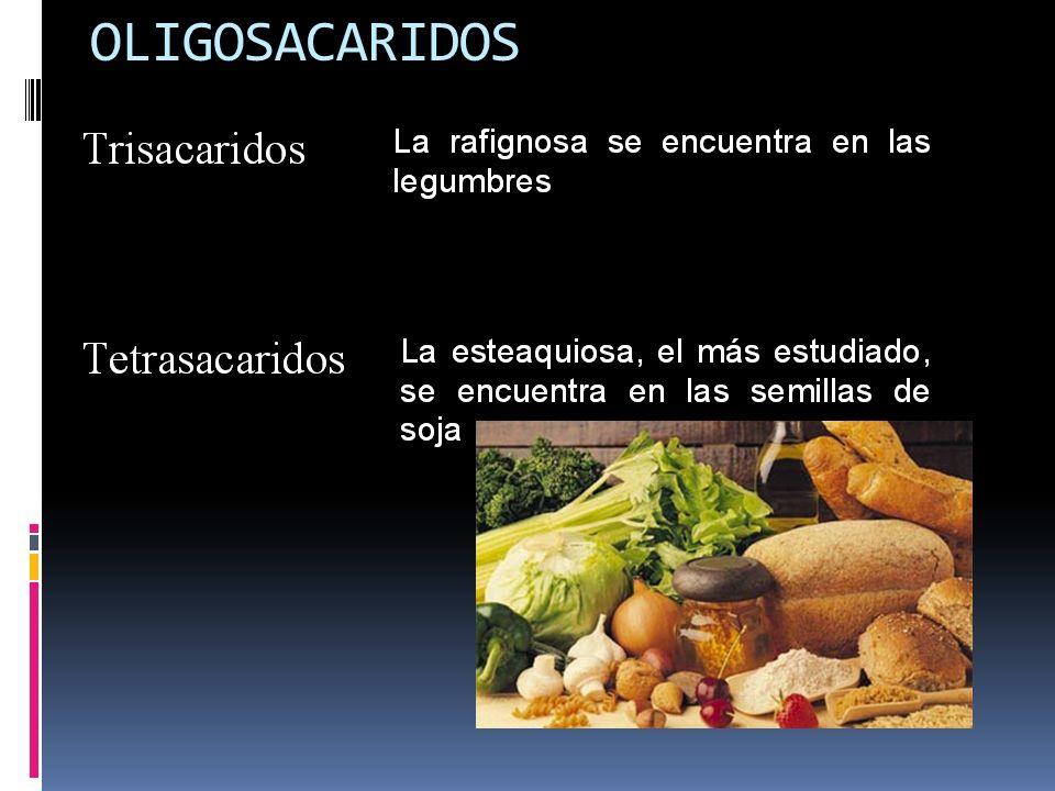 OLIGOSACARIDOS