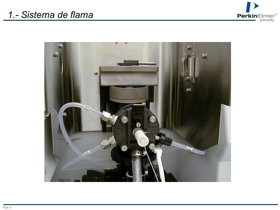 1.- Sistema de flama Page 13