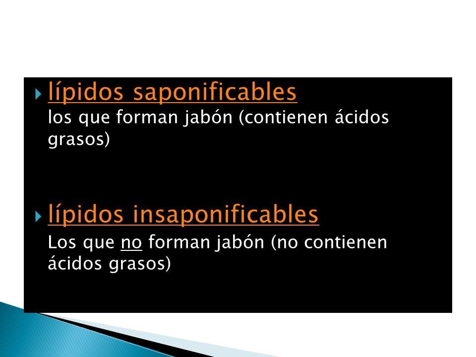lípidos saponificables los que forman jabón (contienen ácidos grasos)