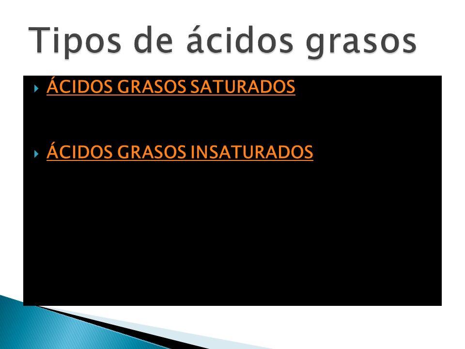 Tipos de ácidos grasos ÁCIDOS GRASOS SATURADOS