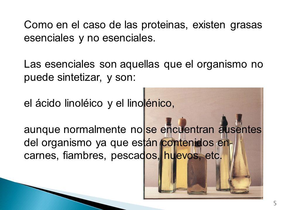 el ácido linoléico y el linolénico,