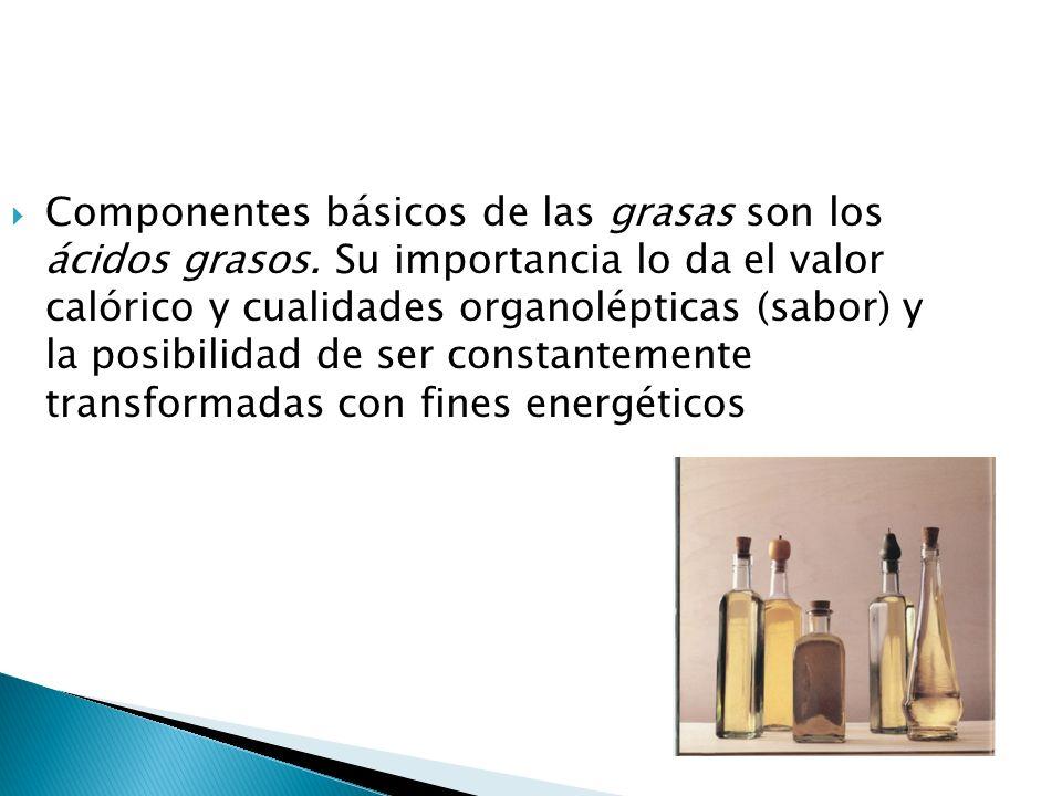 Componentes básicos de las grasas son los ácidos grasos