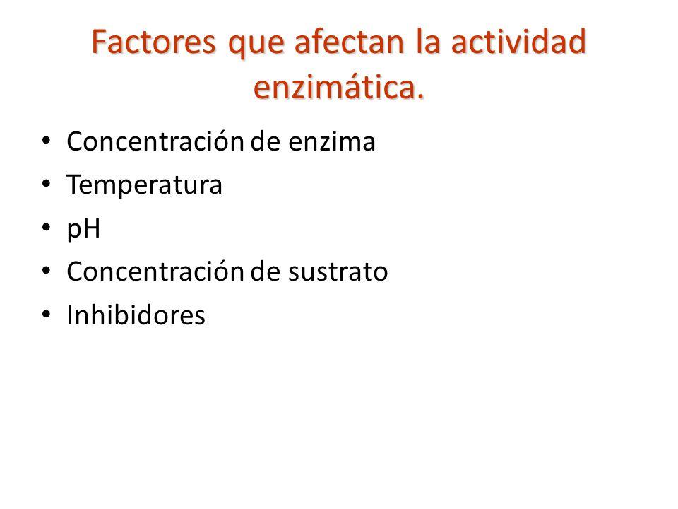 Factores que afectan la actividad enzimática.