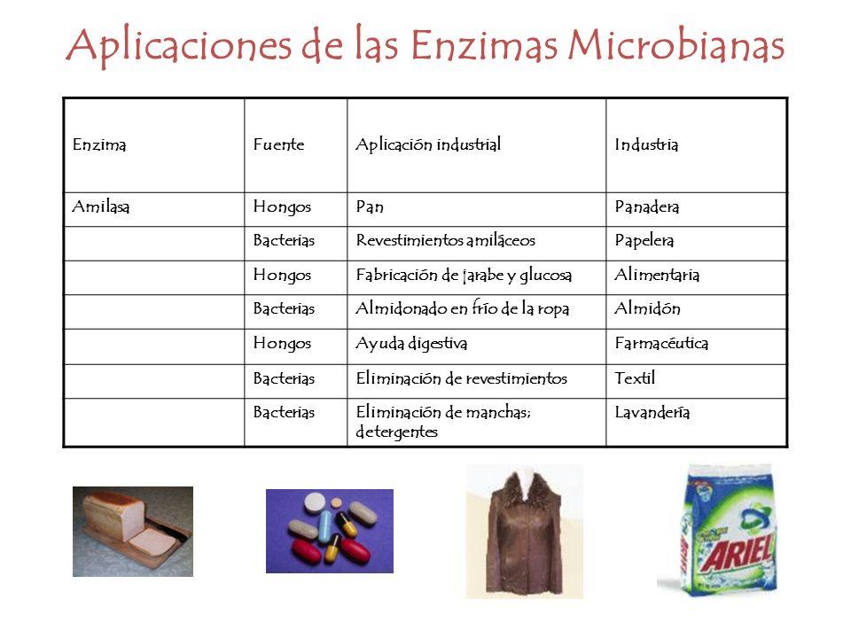 Aplicaciones de las Enzimas Microbianas