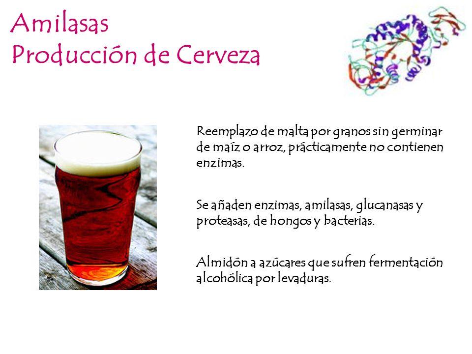 Amilasas Producción de Cerveza
