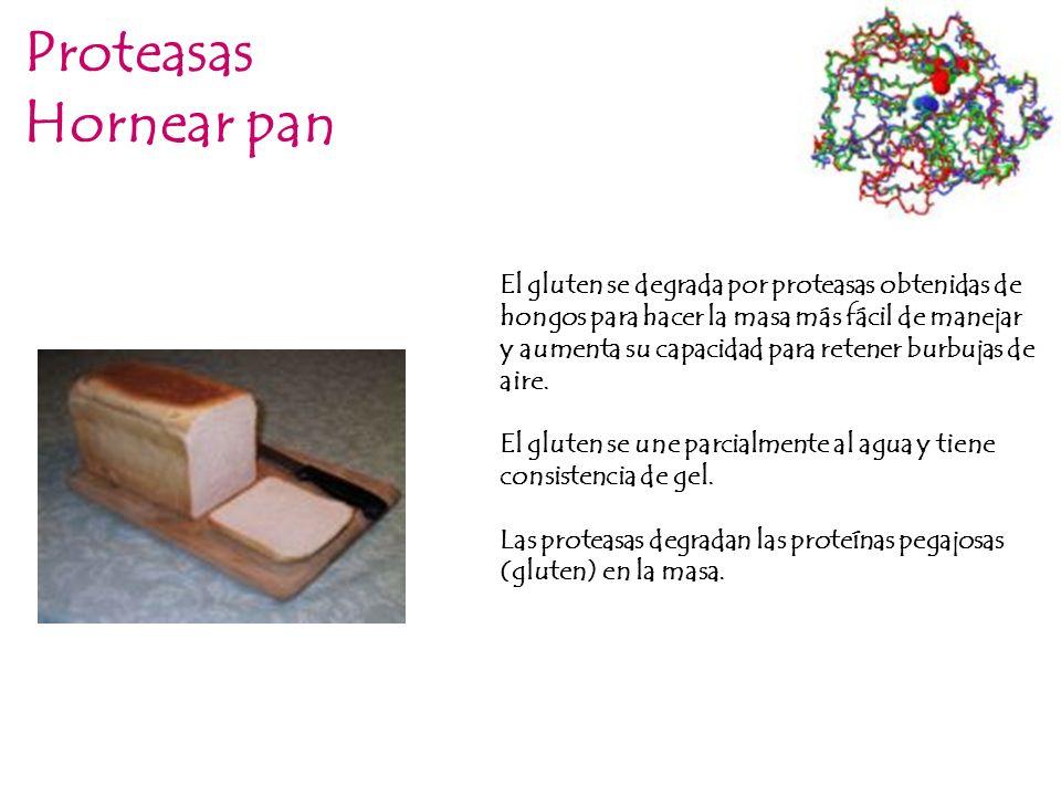 ProteasasHornear pan.