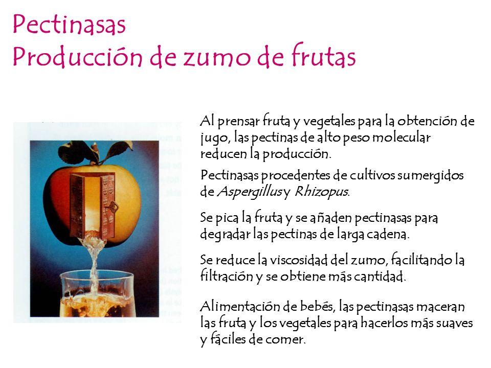 Producción de zumo de frutas