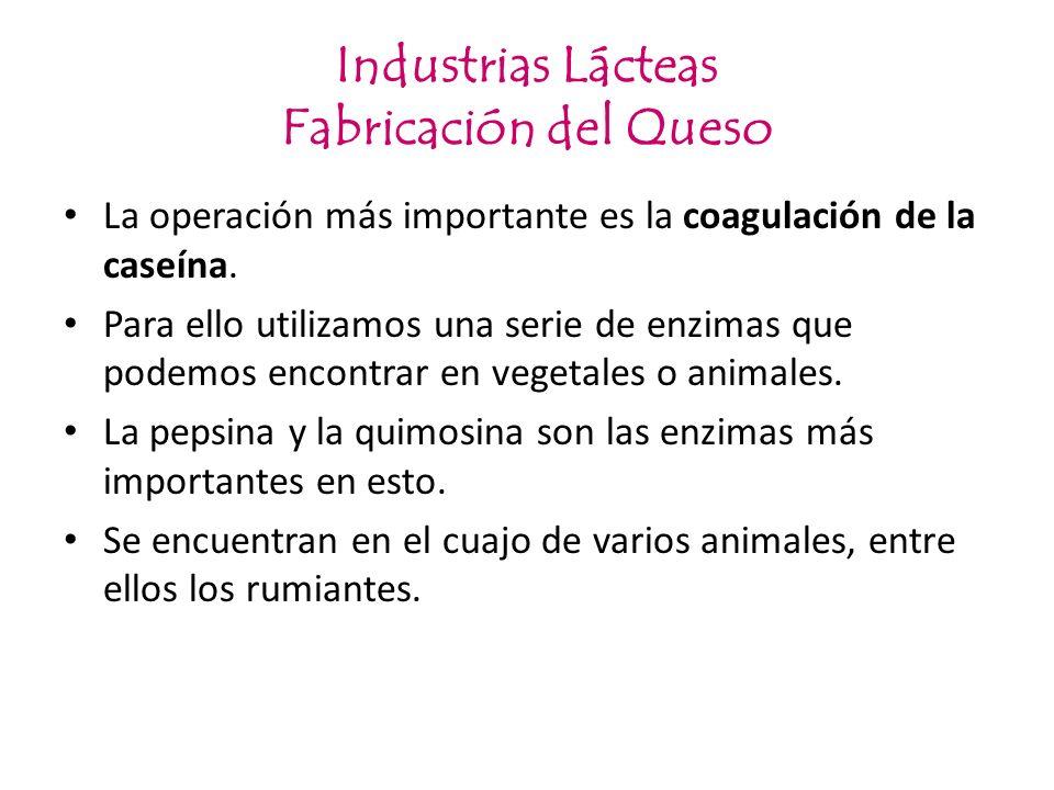 Industrias Lácteas Fabricación del Queso