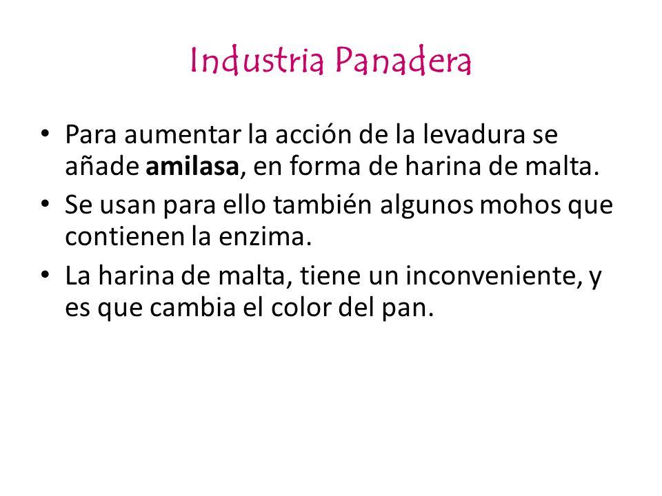 Industria PanaderaPara aumentar la acción de la levadura se añade amilasa, en forma de harina de malta.
