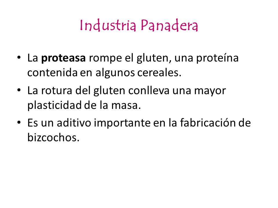 Industria Panadera La proteasa rompe el gluten, una proteína contenida en algunos cereales.