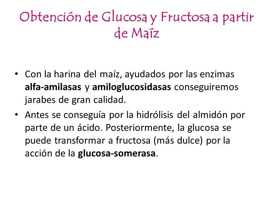 Obtención de Glucosa y Fructosa a partir de Maíz
