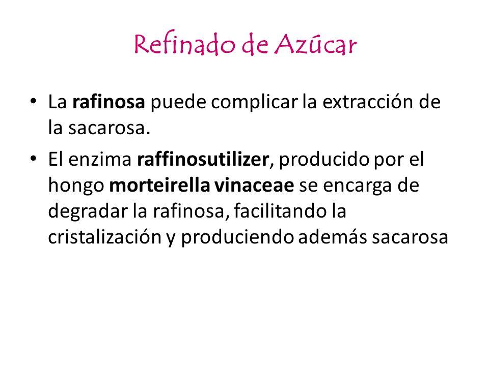 Refinado de Azúcar La rafinosa puede complicar la extracción de la sacarosa.