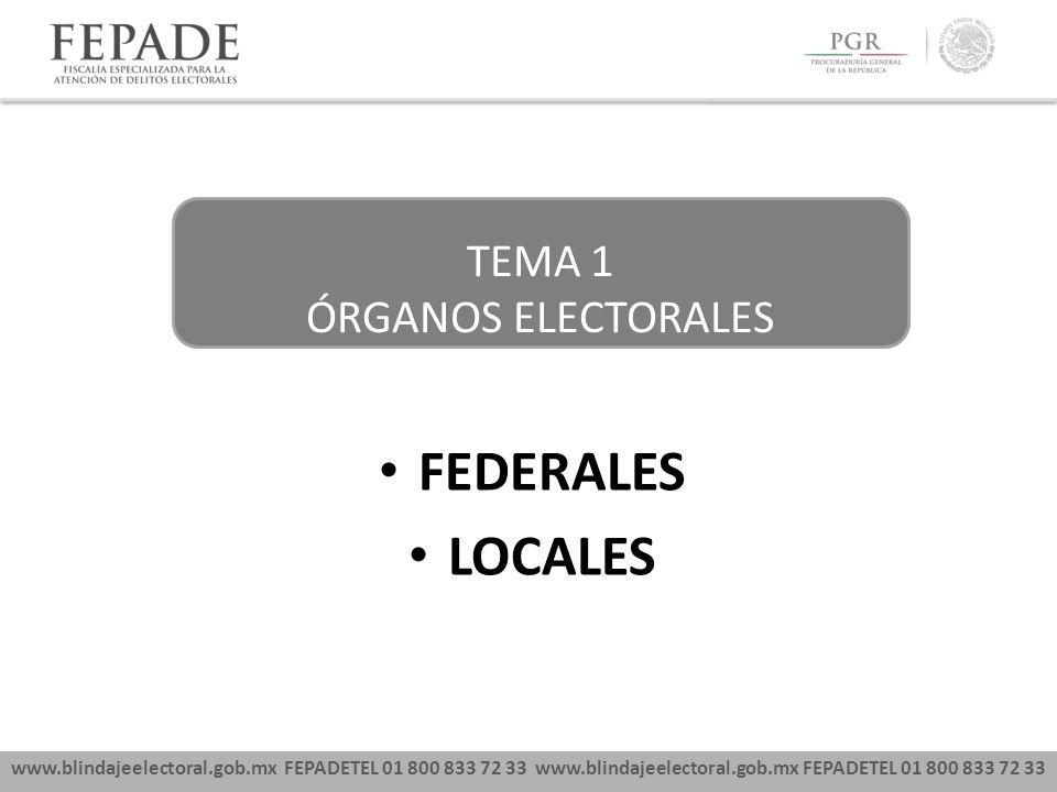 FEDERALES LOCALES TEMA 1 ÓRGANOS ELECTORALES