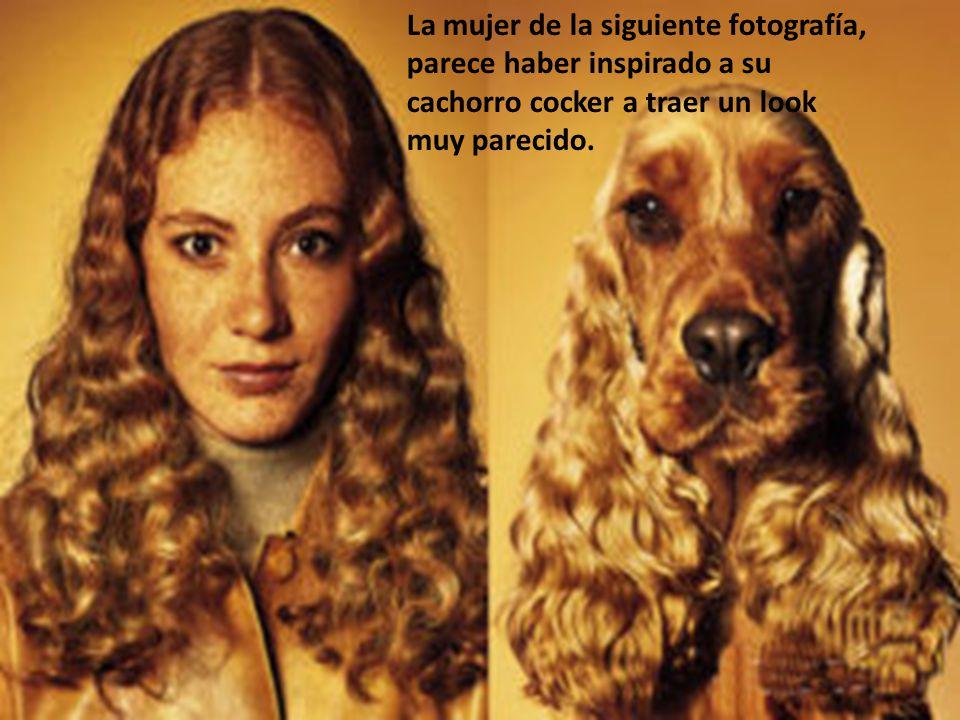 La mujer de la siguiente fotografía, parece haber inspirado a su cachorro cocker a traer un look muy parecido.