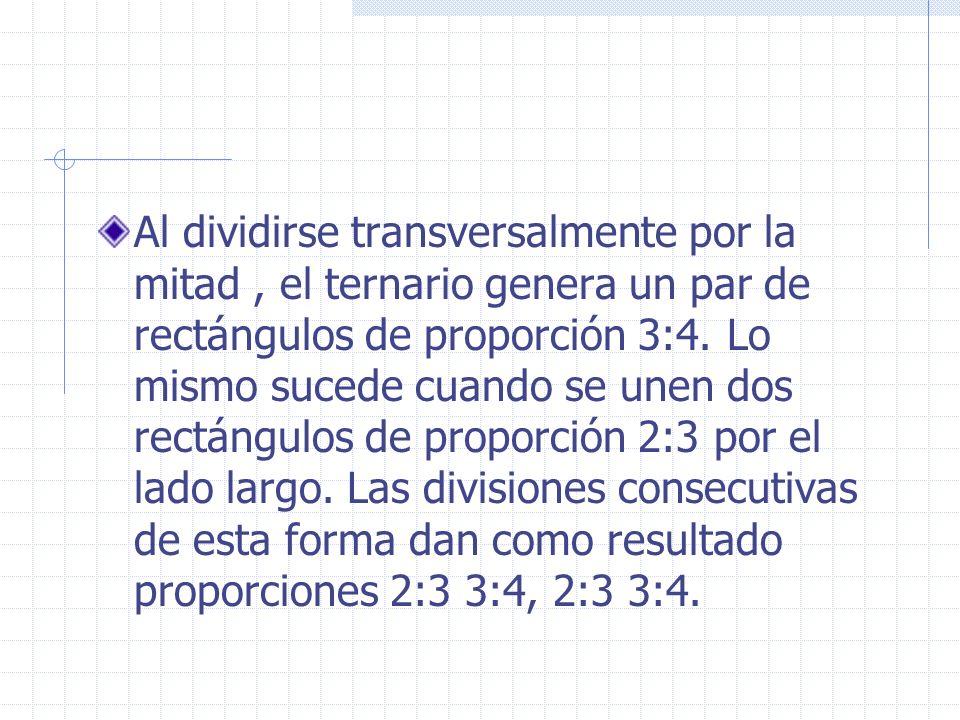 Al dividirse transversalmente por la mitad , el ternario genera un par de rectángulos de proporción 3:4.