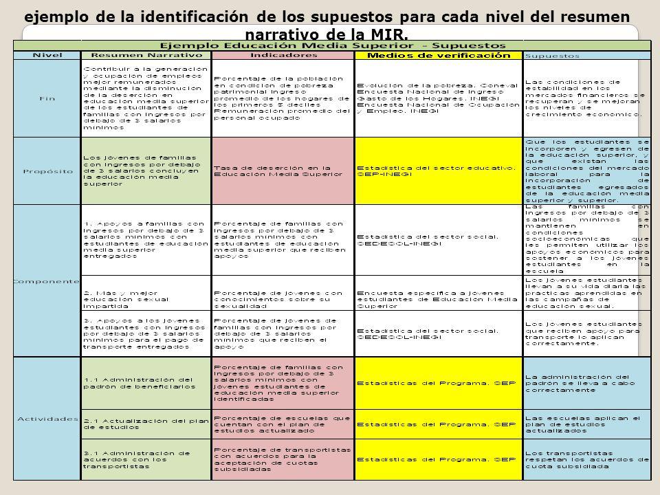 ejemplo de la identificación de los supuestos para cada nivel del resumen narrativo de la MIR.