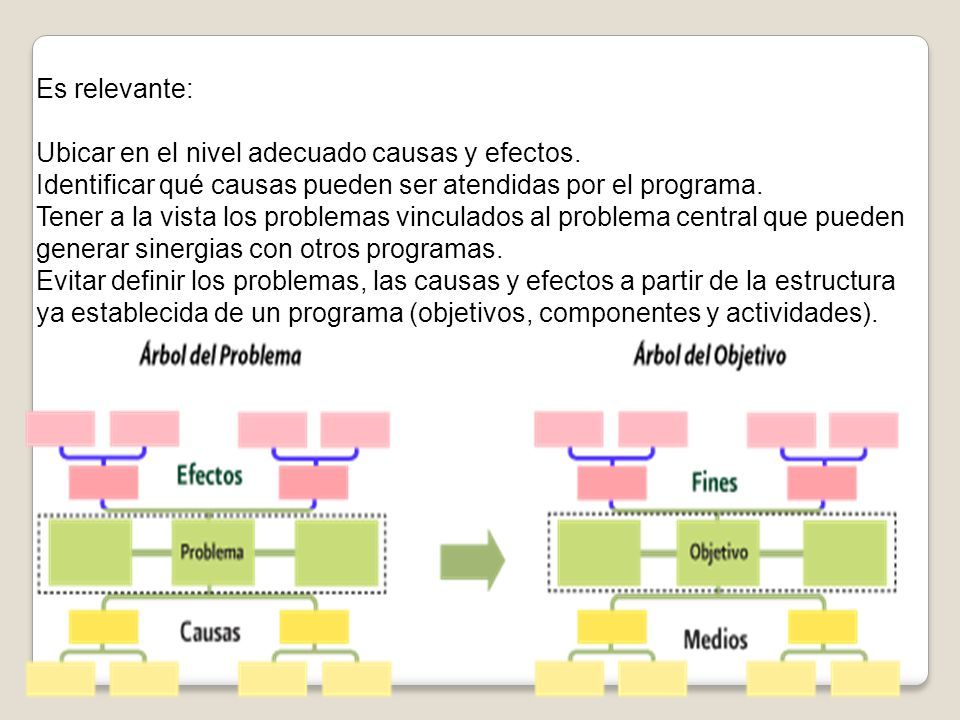 Es relevante: Ubicar en el nivel adecuado causas y efectos. Identificar qué causas pueden ser atendidas por el programa.