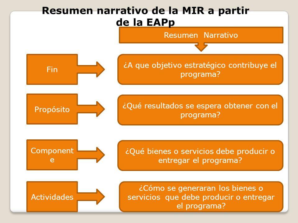 Resumen narrativo de la MIR a partir de la EAPp