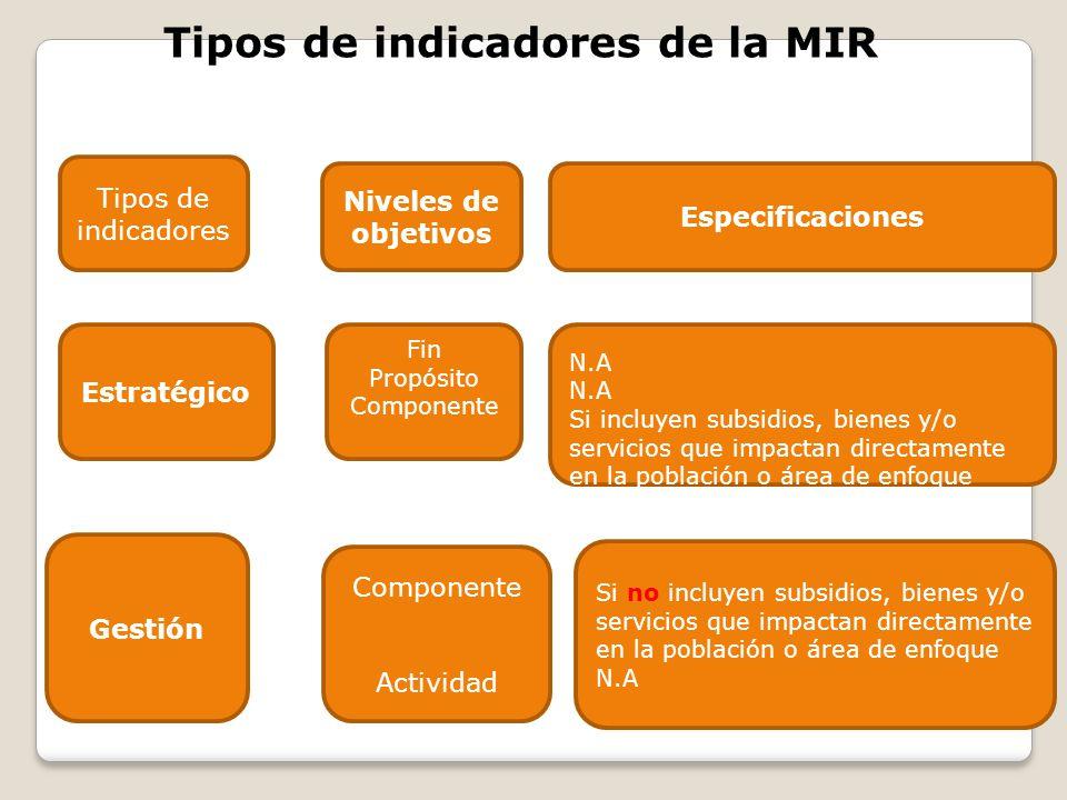 Tipos de indicadores de la MIR