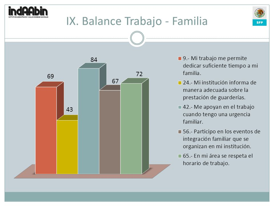IX. Balance Trabajo - Familia