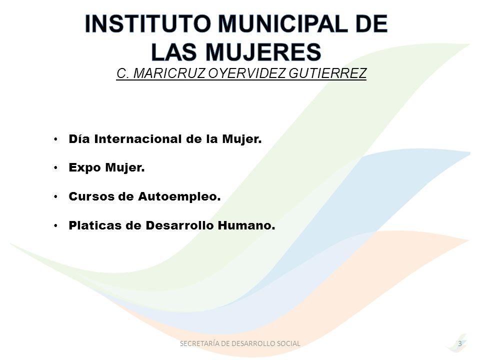INSTITUTO MUNICIPAL DE LAS MUJERES
