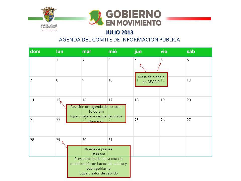JULIO 2013 AGENDA DEL COMITÉ DE INFORMACION PUBLICA