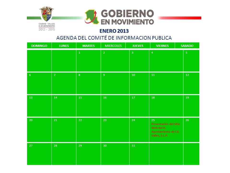 ENERO 2013 AGENDA DEL COMITÉ DE INFORMACION PUBLICA