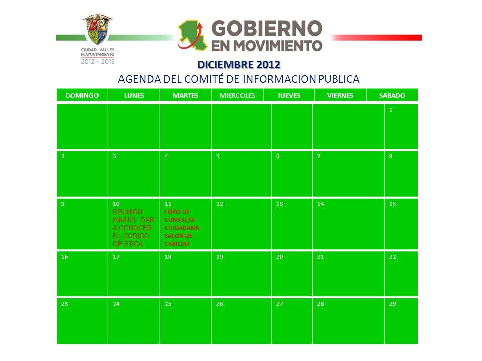 DICIEMBRE 2012 AGENDA DEL COMITÉ DE INFORMACION PUBLICA
