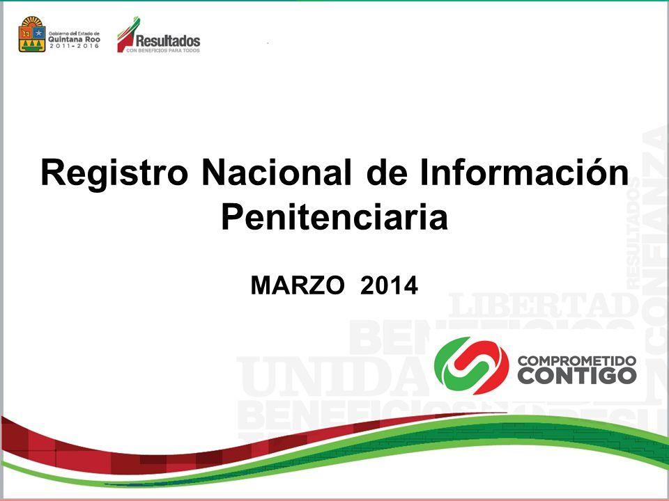 Registro Nacional de Información Penitenciaria