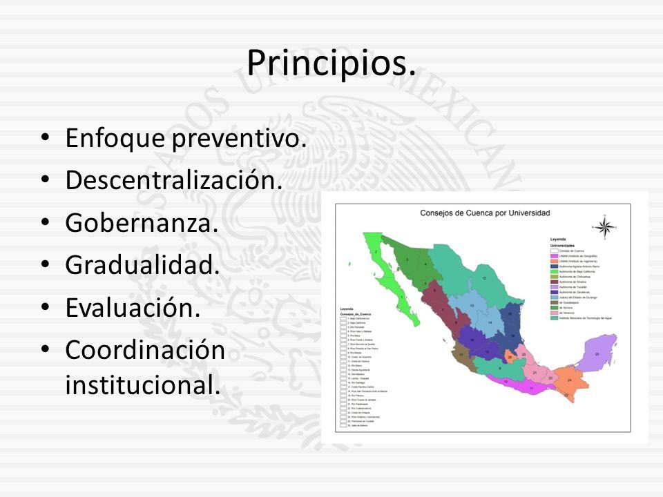 Principios. Enfoque preventivo. Descentralización. Gobernanza.