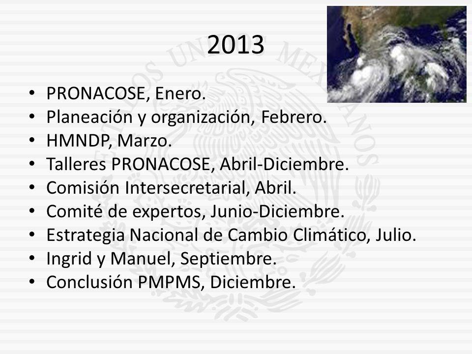 2013 PRONACOSE, Enero. Planeación y organización, Febrero.