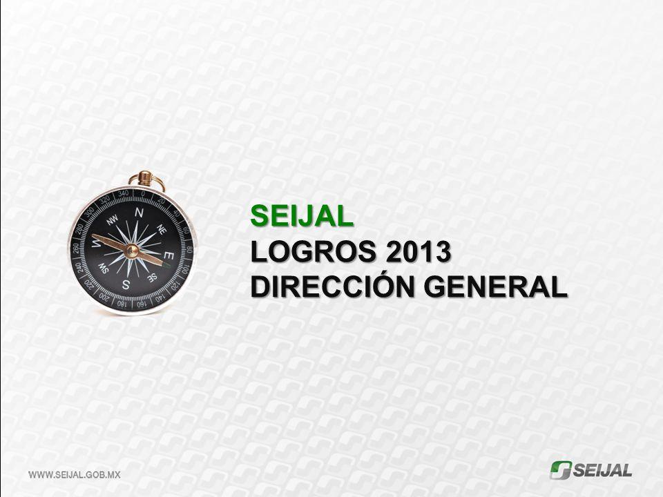 SEIJAL LOGROS 2013 DIRECCIÓN GENERAL