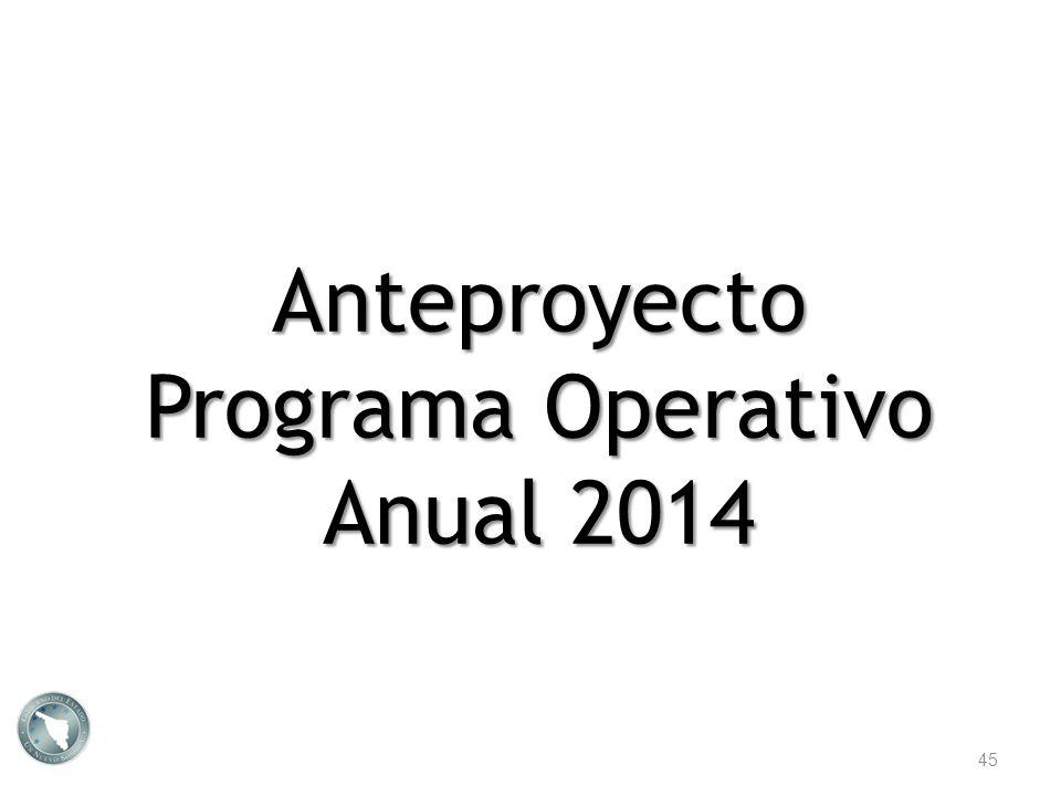 Programa Operativo Anual 2014