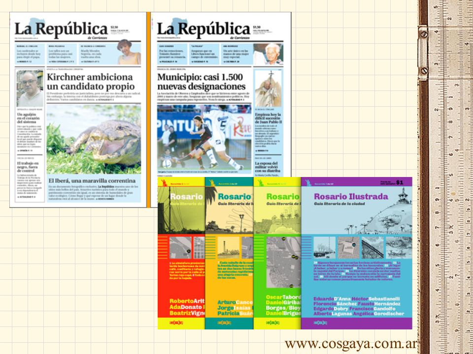 www.cosgaya.com.ar