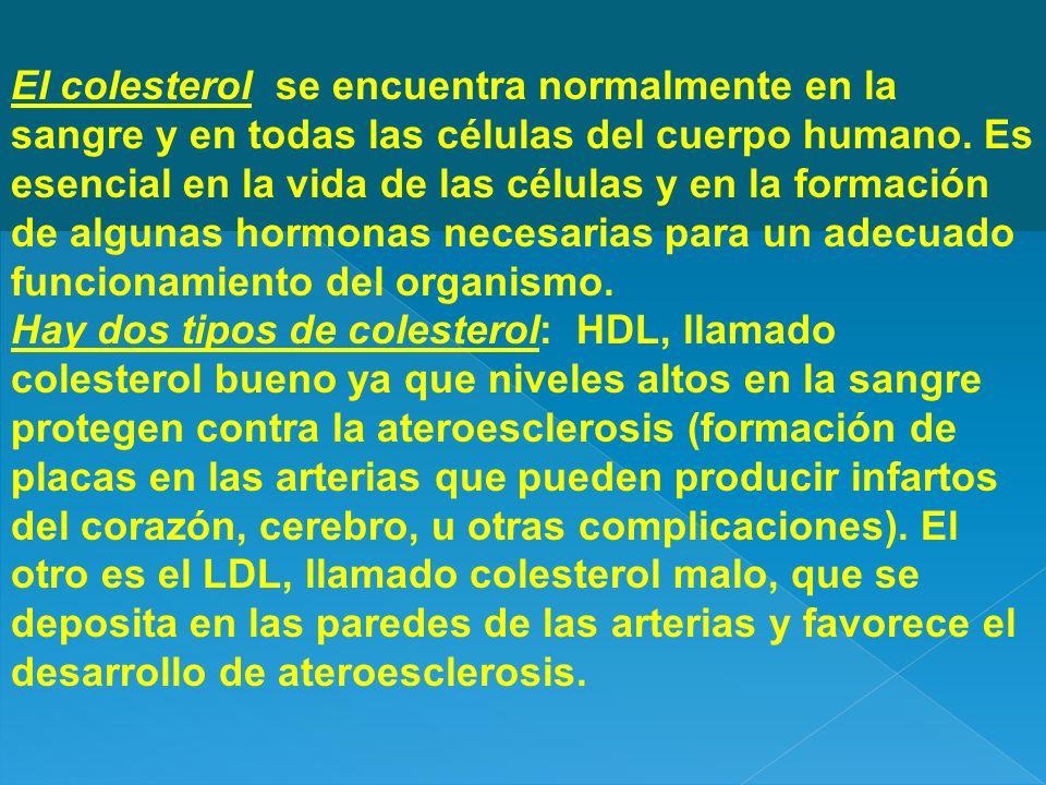 El colesterol se encuentra normalmente en la sangre y en todas las células del cuerpo humano. Es esencial en la vida de las células y en la formación de algunas hormonas necesarias para un adecuado funcionamiento del organismo.