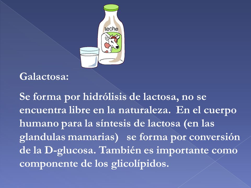 Galactosa: